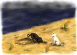 Hunde am Strand3